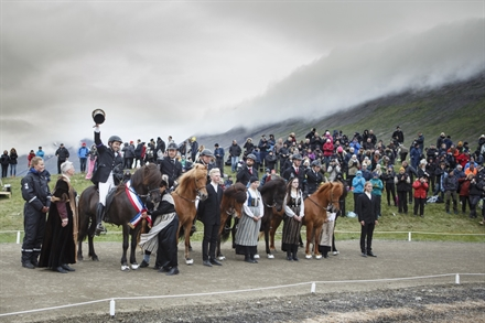 Landsmót - The National Icelandic Horse Competition
