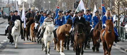 The International Day of the Icelandic horse